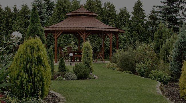 Feasterville-Trevose Garden Design