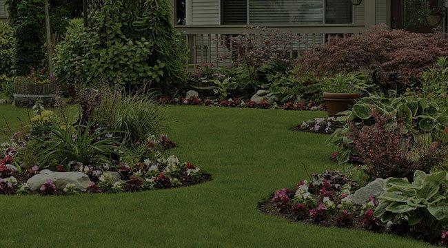 Holland Landscape Design