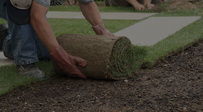 Feasterville-Trevose Lawn Care